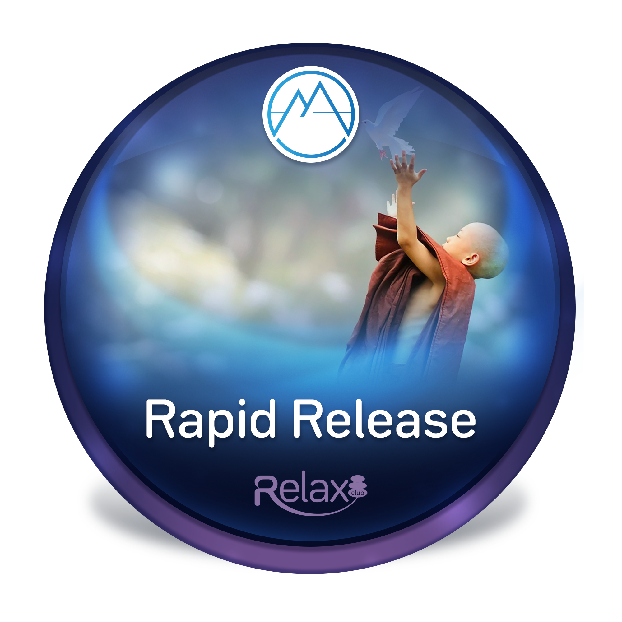 Rapid Release cover image